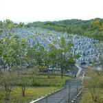 令和3年度名張市営東山墓園の使用者抽選会の開催が決定しました。
